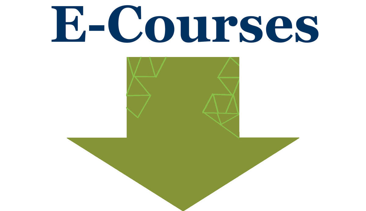 E-Courses Below
