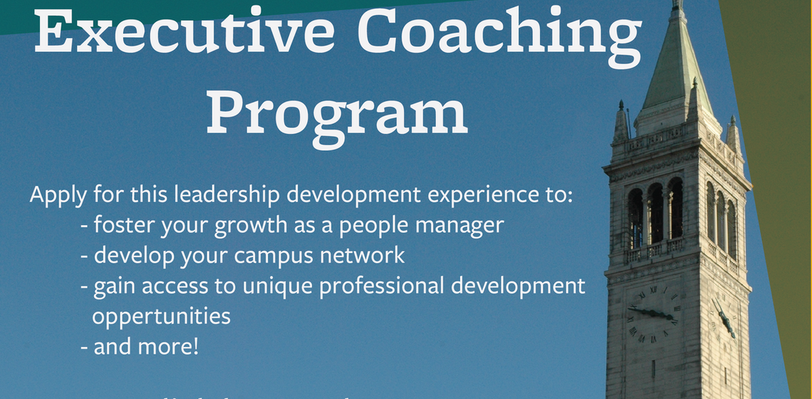 Executive Coaching Program (Click Here)