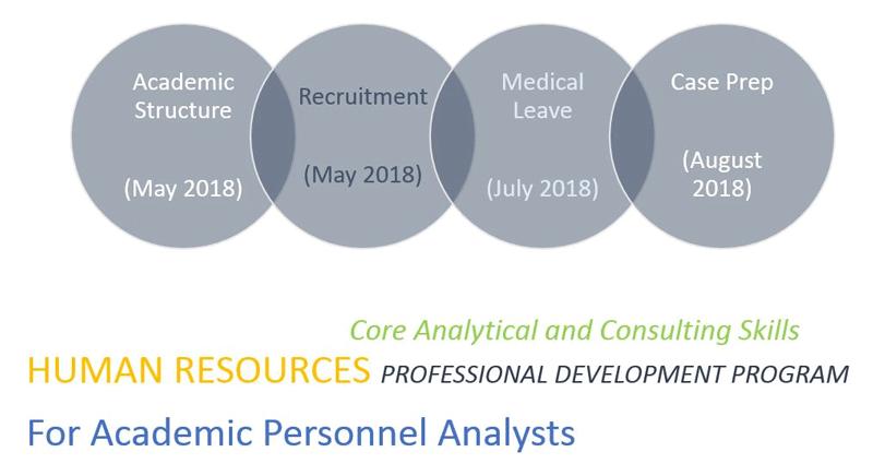 Core Analytics & Consulting Skills Image