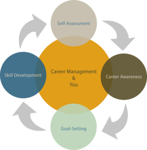 Staff Career Development Model
